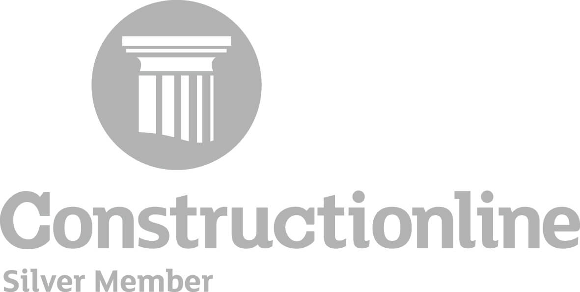 Silver web logo